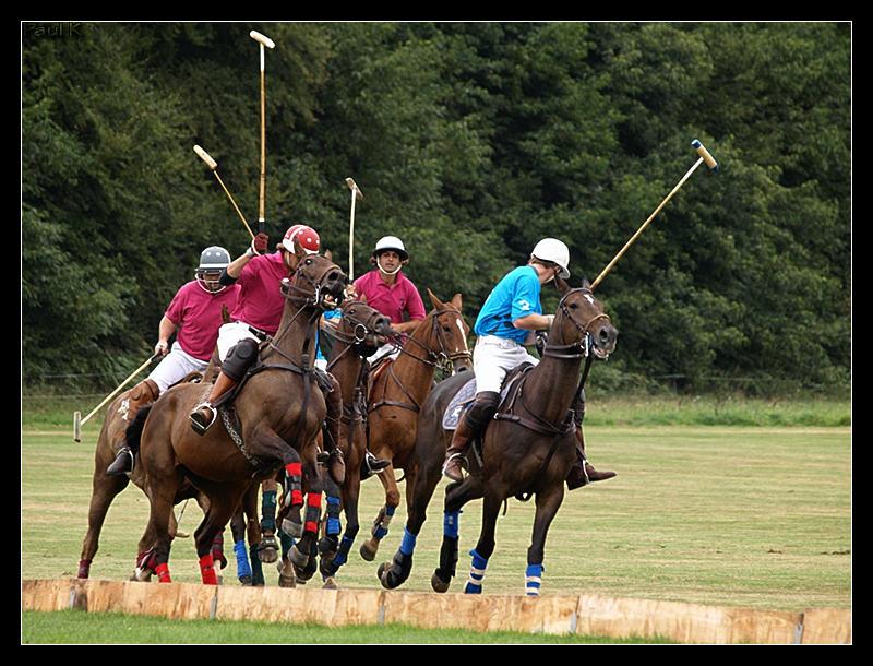 Encore des chevaux : tournoi de polo au Chef-du-Bois à La Forêt-Fouesnant Image54