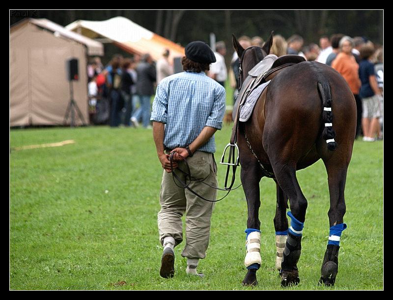 Encore des chevaux : tournoi de polo au Chef-du-Bois à La Forêt-Fouesnant Image58