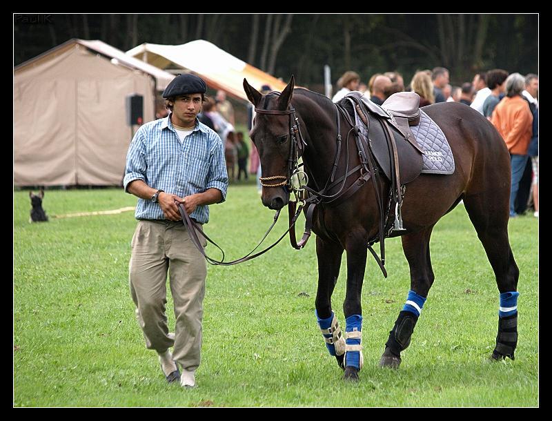 Encore des chevaux : tournoi de polo au Chef-du-Bois à La Forêt-Fouesnant Image59