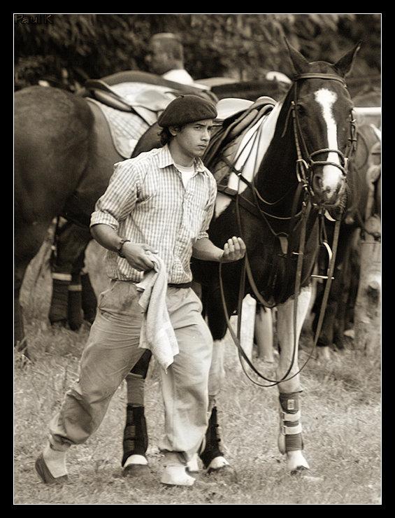 Encore des chevaux : tournoi de polo au Chef-du-Bois à La Forêt-Fouesnant Image60