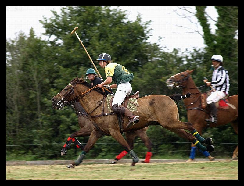 Encore des chevaux : tournoi de polo au Chef-du-Bois à La Forêt-Fouesnant Image68
