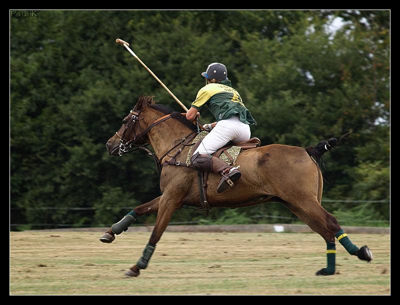 Encore des chevaux : tournoi de polo au Chef-du-Bois à La Forêt-Fouesnant Image69