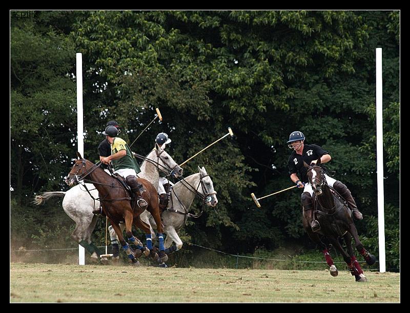 Encore des chevaux : tournoi de polo au Chef-du-Bois à La Forêt-Fouesnant Image71