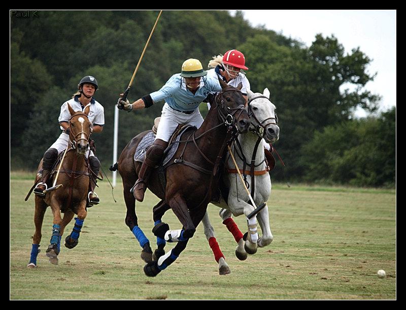 Encore des chevaux : tournoi de polo au Chef-du-Bois à La Forêt-Fouesnant Image74