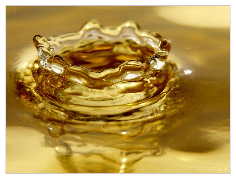 Vos plus belles photos du mois de novembre 2009 Image40