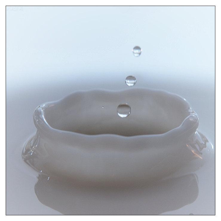 chute d'eau dans du lait Image58